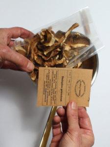 Waldpilze abgeschnittene Pilzetikette in...